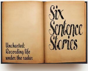 Six Sentence Storied